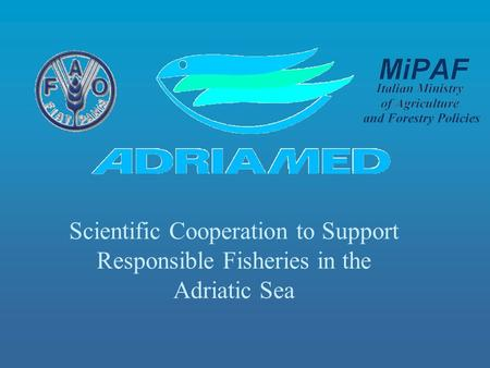 Scientific Cooperation to Support Responsible Fisheries in the Adriatic Sea.