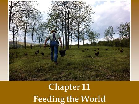 Chapter 11 Feeding the World.