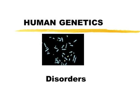 HUMAN GENETICS Disorders. How information is taken to detect genetic disorders before birth zBlood test zAmniocentesis zChorionic villus sampling CVS.