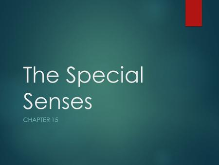 The Special Senses Chapter 15.