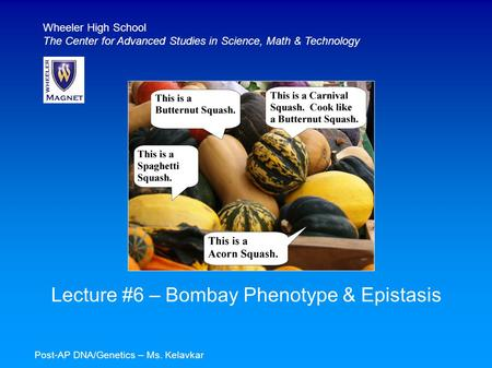 Lecture #6 – Bombay Phenotype & Epistasis