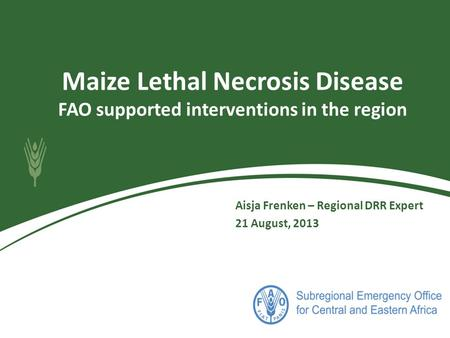 Maize Lethal Necrosis Disease FAO supported interventions in the region Aisja Frenken – Regional DRR Expert 21 August, 2013.
