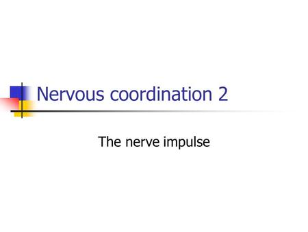 Nervous coordination 2 The nerve impulse.