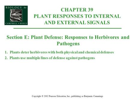 CHAPTER 39 PLANT RESPONSES TO INTERNAL AND EXTERNAL SIGNALS Copyright © 2002 Pearson Education, Inc., publishing as Benjamin Cummings Section E: Plant.