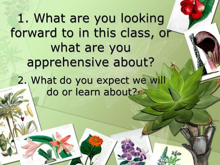SCIENCE STARTER: 1. What are you looking forward to in this class, or what are you apprehensive about? 2. What do you expect we will do or learn about?
