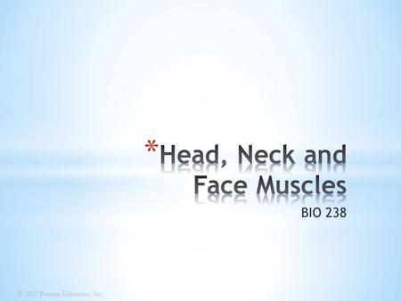 Head, Neck and Face Muscles