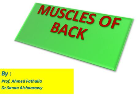 MUSCLES OF BACK By : Prof. Ahmed Fathalla Dr.Sanaa Alshaarawy.