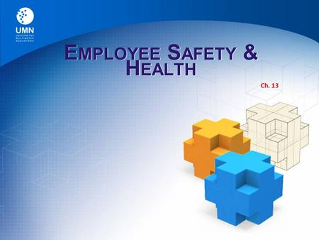 "E MPLOYEE S AFETY & H EALTH Ch. 13. Occupational Safety Law  Occupational Safety and Health Act The law passed by Congress in 1970 ""to assure so far."