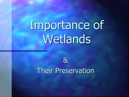 Importance of Wetlands & Their Preservation. What is a wetland? Marsh: soft-stemmed vegetation Swamp: woody plants Bog: freshwater, spongy peat, evergreens,