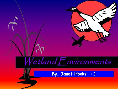 Wetland Environments By, Janet Hooks : ). ECOSYSTEM- All of the BIOTIC (living) things and all of the ABIOTIC (non-living) factors in an environment.