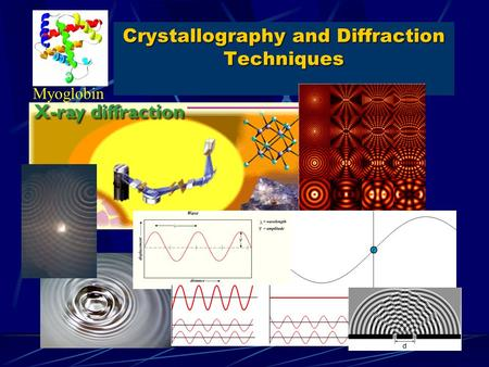 Crystallography and Diffraction Techniques Myoglobin.