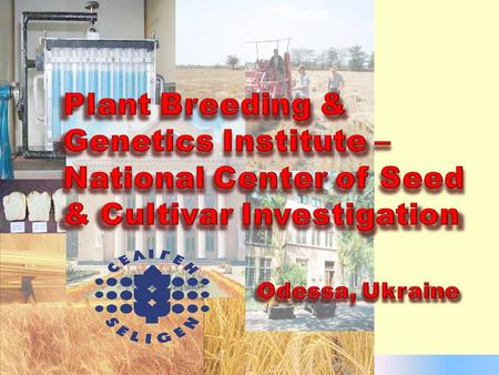 ◘ The Plant Breeding and Genetics Institute – National Center of Seed & Cultivar Investigation is one of the leading centers of agricultural science in.