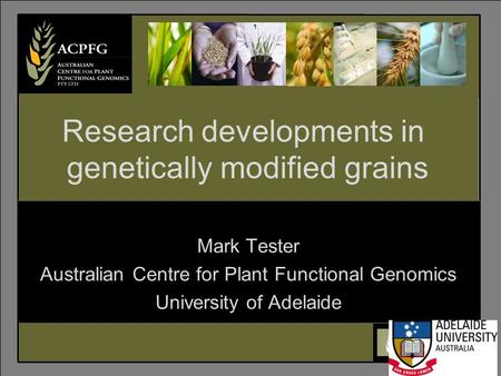6 Mark Tester Australian Centre for Plant Functional Genomics University of Adelaide Research developments in genetically modified grains.
