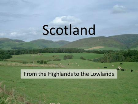 From the Highlands to the Lowlands