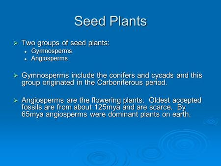 Seed Plants  Two groups of seed plants: Gymnosperms Gymnosperms Angiosperms Angiosperms  Gymnosperms include the conifers and cycads and this group originated.