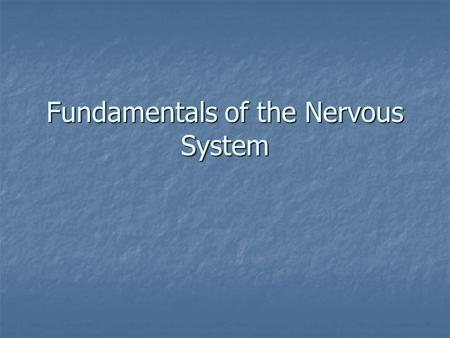 Fundamentals of the Nervous System