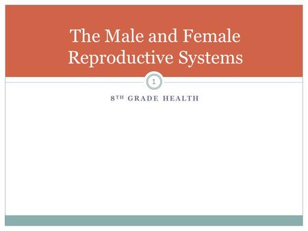The Male and Female Reproductive Systems