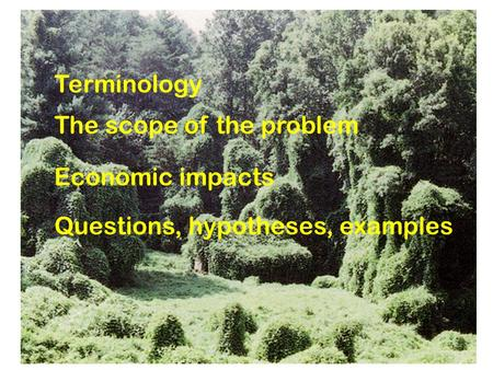 Terminology The scope of the problem Economic impacts Questions, hypotheses, examples.