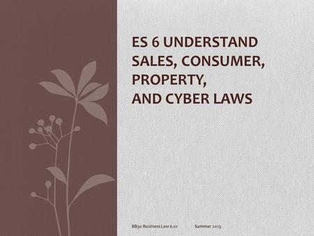 BB30 Business Law 6.01Summer 2013 ES 6 UNDERSTAND SALES, CONSUMER, PROPERTY, AND CYBER LAWS.