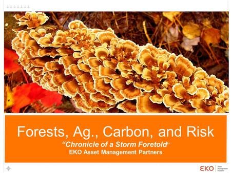 "1 Forests, Ag., Carbon, and Risk ""Chronicle of a Storm Foretold "" EKO Asset Management Partners 1."
