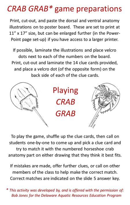 Horseshoe Crab Molt Anatomy Lab – basic structures 4. EYES: Find the ...