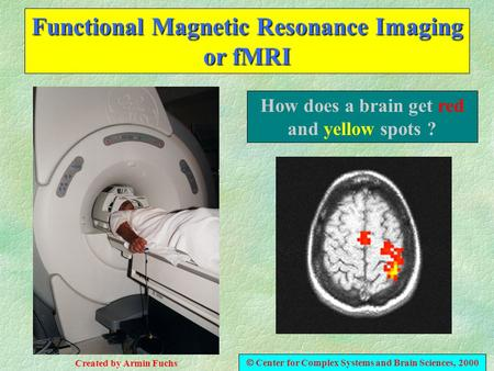 Functional Magnetic Resonance Imaging or fMRI How does a brain get red and yellow spots ?  Center for Complex Systems and Brain Sciences, 2000 Created.