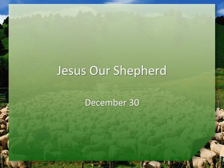 Jesus Our Shepherd December 30. Quiz Time … What are some facts you know about sheep? These facts suggest that sheep need a shepherd. These facts suggest.