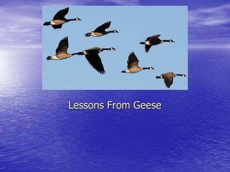 Lessons From Geese. V- Formation As each bird flaps its wings, it creates uplift for the bird following. As each bird flaps its wings, it creates uplift.