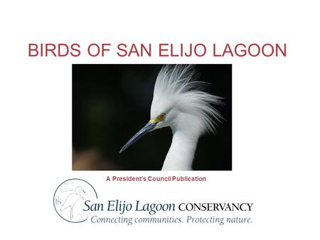 BIRDS OF SAN ELIJO LAGOON A President's Council Publication.