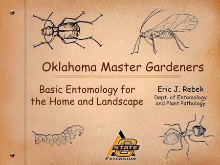 Oklahoma Master Gardeners Basic Entomology for the Home and Landscape Eric J. Rebek Dept. of Entomology and Plant Pathology.