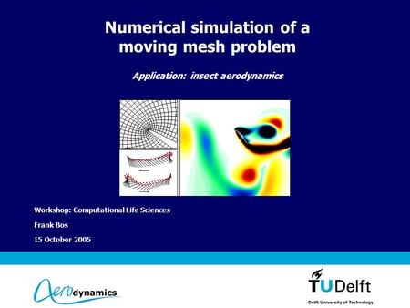 Vermelding onderdeel organisatie 15 October 2005 Numerical simulation of a moving mesh problem Application: insect aerodynamics Workshop: Computational.