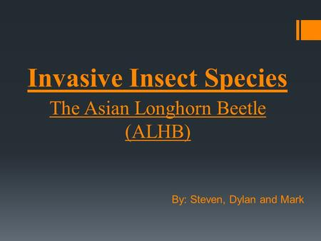 Invasive Insect Species The Asian Longhorn Beetle (ALHB) By: Steven, Dylan and Mark.