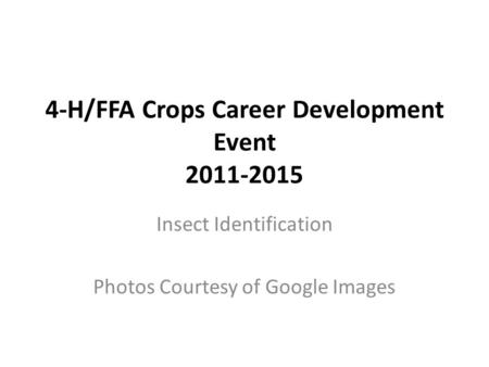 4-H/FFA Crops Career Development Event 2011-2015 Insect Identification Photos Courtesy of Google Images.