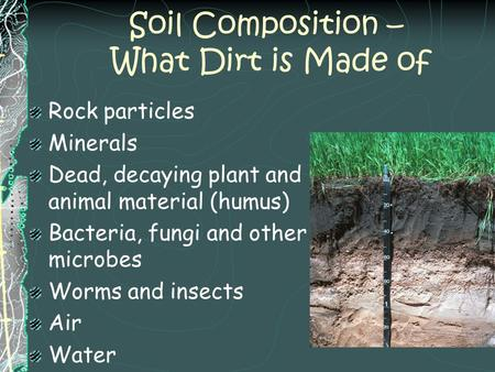 Soil Composition – What Dirt is Made of