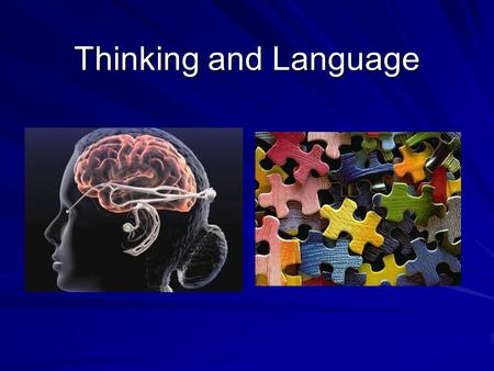 Thinking and Language. Organizing Our Thoughts…. ( Making cognitive sense out of our world…) CognitionConcept Category Hierarchies We form concepts by…