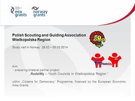 "Aim: - preparing bilateral partner project: ""RadziMy – Youth Councils in Wielkopolska Region."" within ""Citizens for Democracy"" Programme, financed by the."