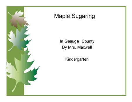 Maple Sugaring In Geauga County By Mrs. Maxwell Kindergarten.