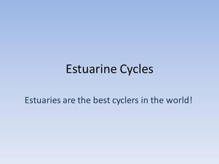 Estuarine Cycles Estuaries are the best cyclers in the world!