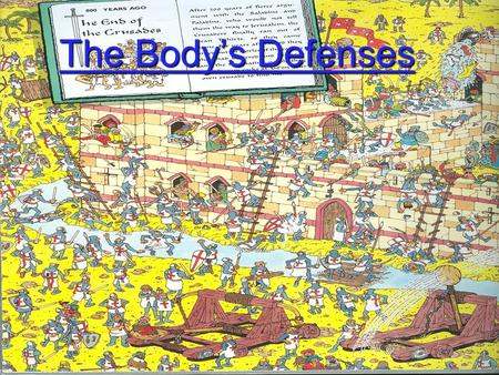 The Body's Defenses The Body's Defenses Barriers To Infection: Our First Line of Defense- Stopping the invasion  The body has main barriers to infection.
