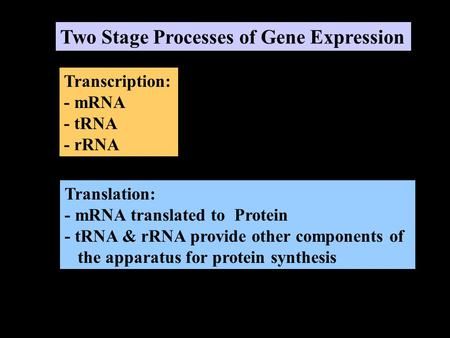 Two Stage Processes of Gene Expression Transcription: - mRNA - tRNA - rRNA Translation: - mRNA translated to Protein - tRNA & rRNA provide other components.