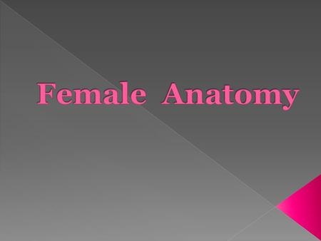  Female Reproductive organ that produces eggs and the hormone estrogen and progesterone.