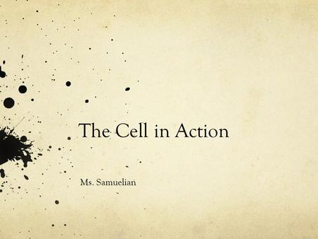 The Cell in Action Ms. Samuelian.