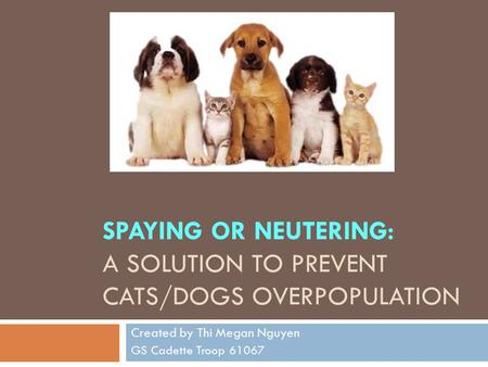 SPAYING OR NEUTERING: A SOLUTION TO PREVENT CATS/DOGS OVERPOPULATION Created by Thi Megan Nguyen GS Cadette Troop 61067.