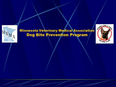 Minnesota Veterinary Medical Association Dog Bite Prevention Program.