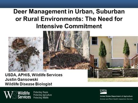 Deer Management in Urban, Suburban or Rural Environments: The Need for Intensive Commitment USDA, APHIS, Wildlife Services Justin Gansowski Wildlife Disease.