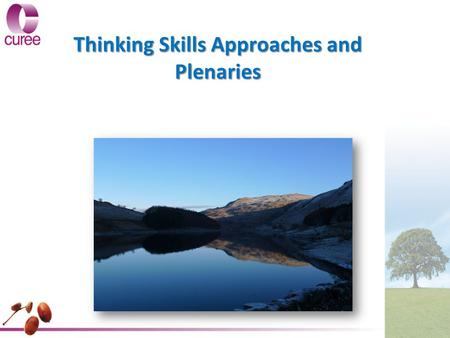 Thinking Skills Approaches and Plenaries. What do we mean by Thinking Skills? Thinking Skills is a method used by teachers to challenge their pupils to: