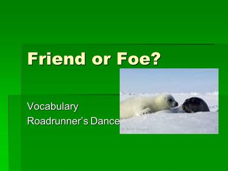 Friend or Foe? Vocabulary Roadrunner's Dance. Interfere  To take part in the affairs of others when not asked.  Don't interfere  In the game.
