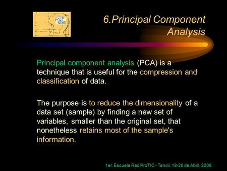 1er. Escuela Red ProTIC - Tandil, 18-28 de Abril, 2006 Principal component analysis (PCA) is a technique that is useful for the compression and classification.