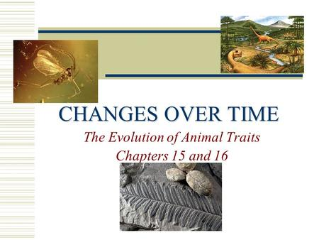 The Evolution of Animal Traits Chapters 15 and 16