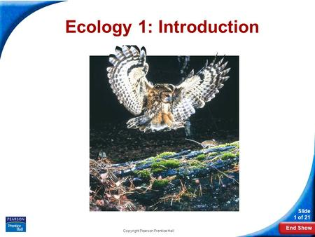 End Show Slide 1 of 21 Copyright Pearson Prentice Hall Ecology 1: Introduction.